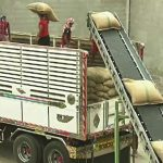 Thai rice exports may miss target due to new foreign workers law